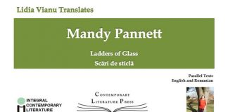 cover mandy pannett