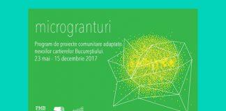 proiecte coumnitare arcub