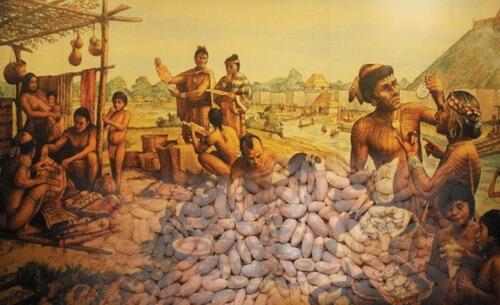 fasole america precolumbiana