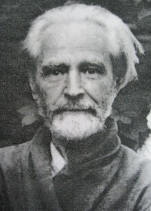 Vasile-Voiculescu 2