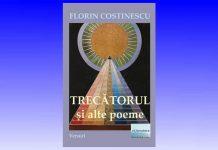 florin costinescu
