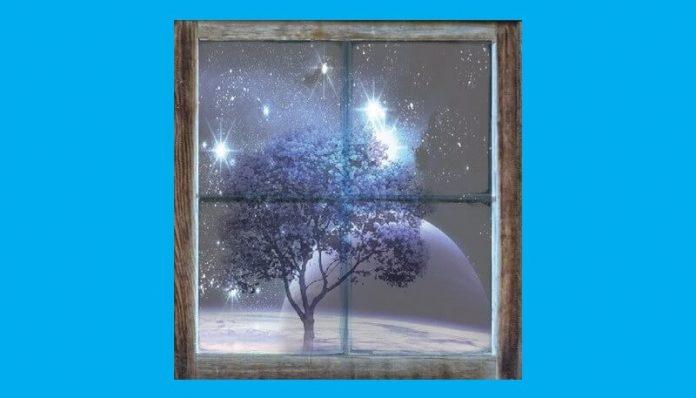 pusa roth proza scurta femeia si copacul vis de decembrie