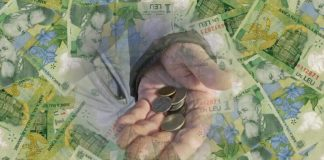 florentina loredana dalian banii leviathan.ro