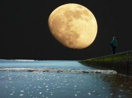 Luna peste saline proza de Letitia Vladislav